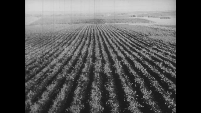 1930s: Illustration of U.S.A. without borders or State names. Desert landscape halved by irrigation canal, vegetation to the right of canal. Farmland. Tractor drives through field.