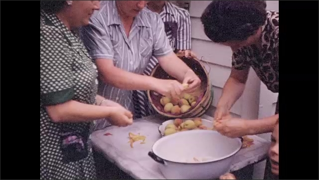 1940s: Group of ladies cluster around table, peeling peaches.