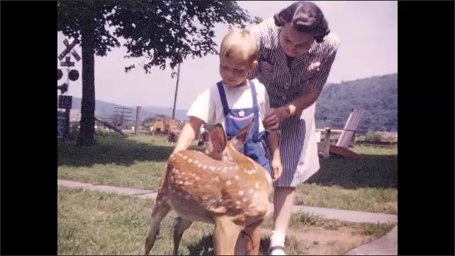 1940s: Small boy and mother pet baby deer.
