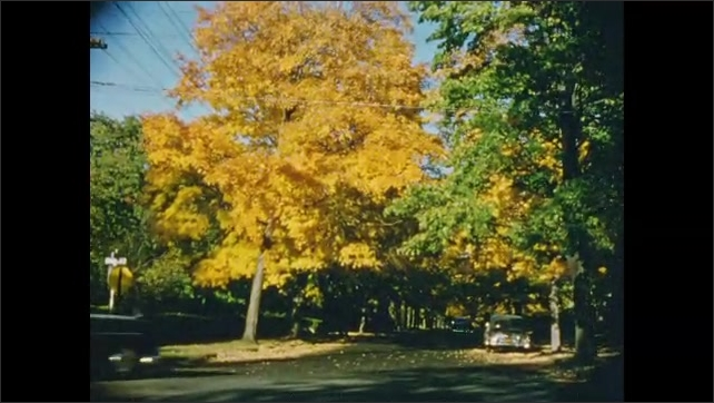 1950's: Views of small town residential street with colorful autumn trees.
