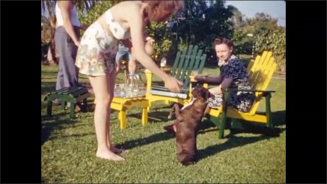 """1940s: Woman in swimsuit plays with begging dog; homemade intertitle reads """"Fort Lauderdale Beach;"""" quiet view of palm trees on beach."""