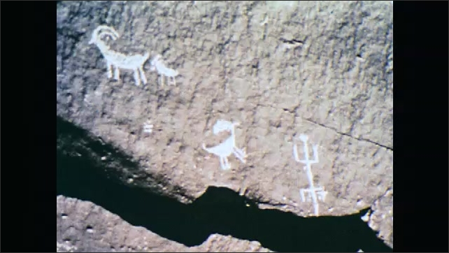 1960s: Amphibian on rock. Tracks in sand. Cave paintings of animals. Cave paintings of hand prints. Old sticks and trees on ground.