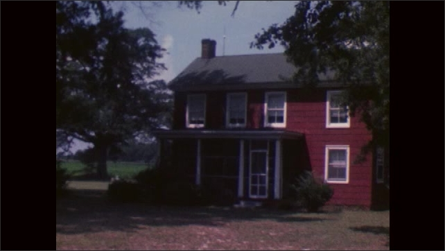 1970s: KNOTTS ISLAND: UNITED STATES: tree in garden. House and garden.