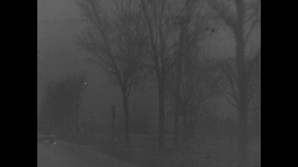 1940s: UNITED STATES: trees flash past at night. Rear view of driver and passenger. Man drives car.
