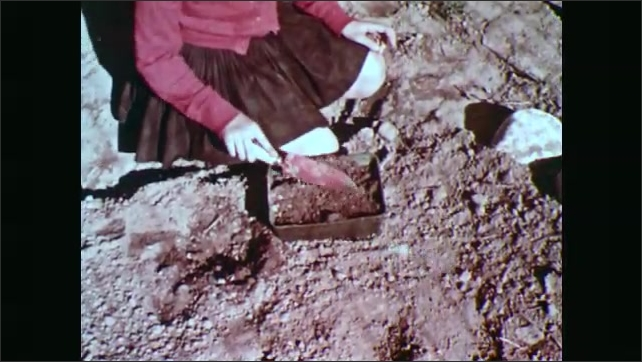 1960s: Girl pulls burrs and weed seeds off sweater. Girl fills small pan with dirt. Hand sits pan of dirt on newspaper lined table near window. Hand waters pan of soil.