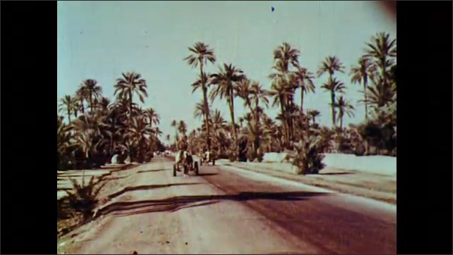 1960s: Coastal city. Buildings. Horse drawn carriage travels down street. Men stand next to camels.