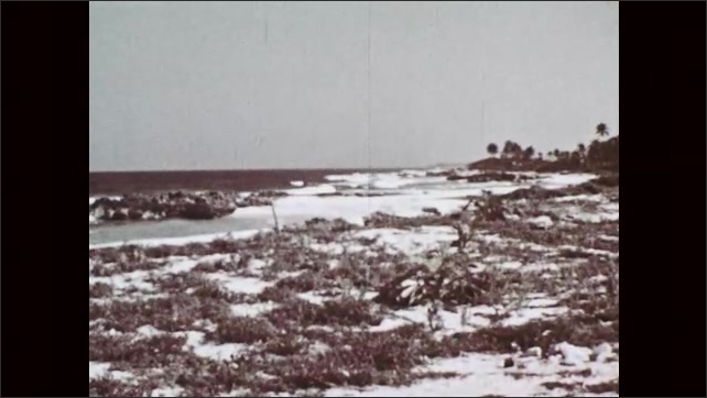 1950s: Distant view of a beach from shore in the day. View changes to different angle and closer view of a beach from the shore. View shows school of fish swimming underwater.