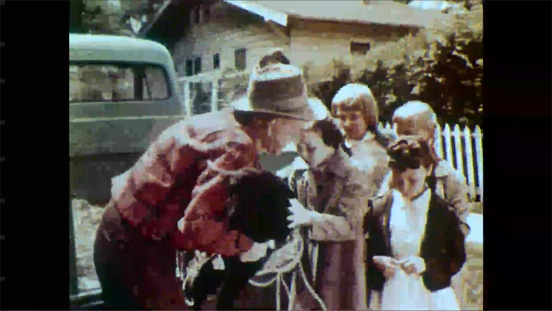 1950s: Girl looks down as man lifts lamb from back of truck. Girls rush to pet lamb on truck. Man carries lamb off truck.