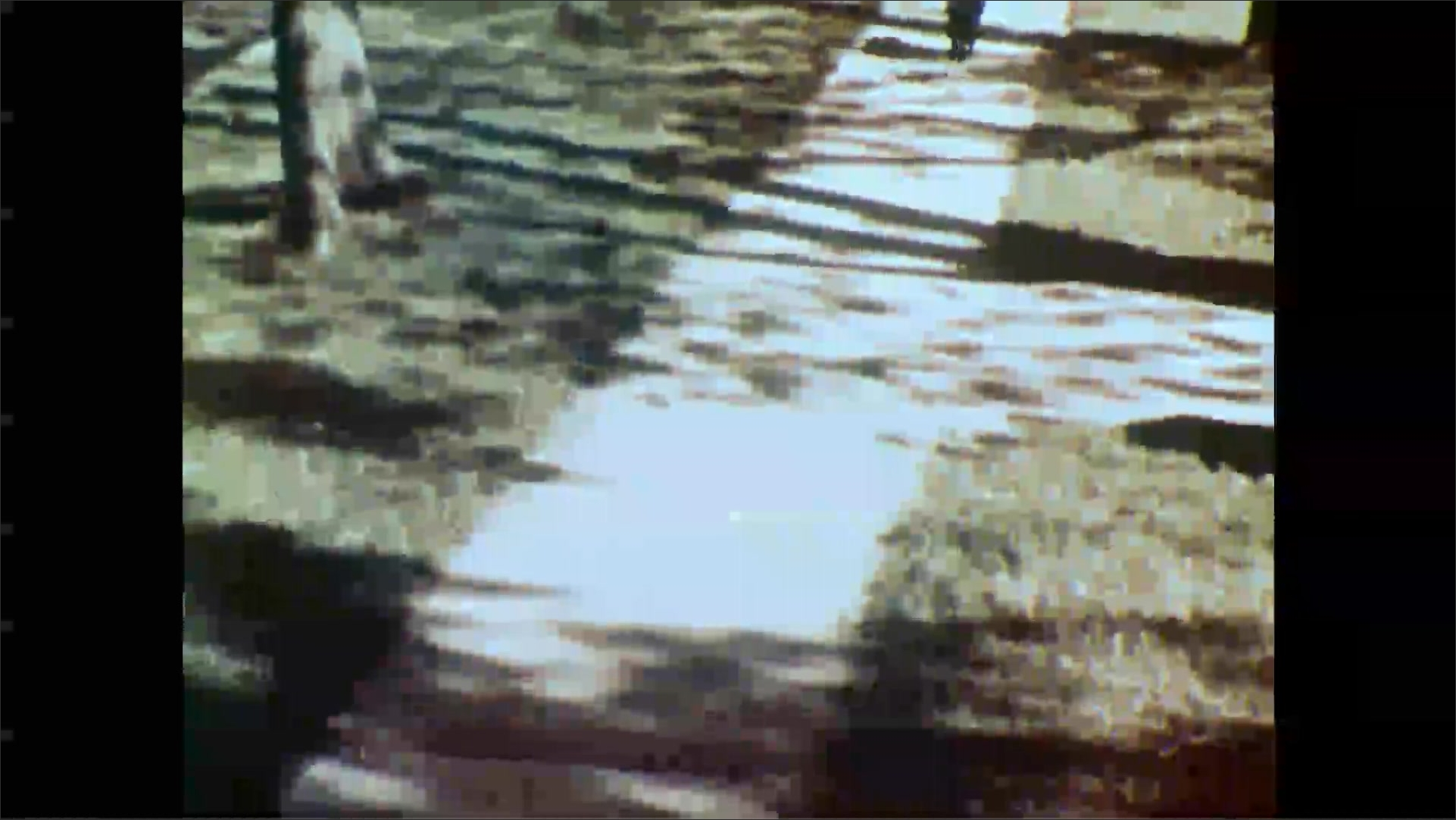 1950s: Lamb runs down neighborhood sidewalk. Girl shuts back door and skips through lawn. Girl covers mouth.