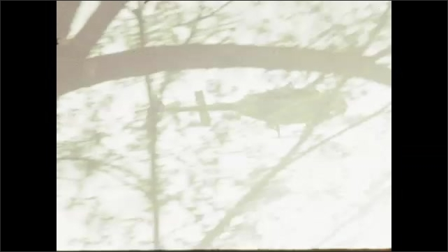 1970s: UNITED STATES: protesters on wall and monument. Police and protesters around building. Helicopter seen through trees in sky. Man at press conference