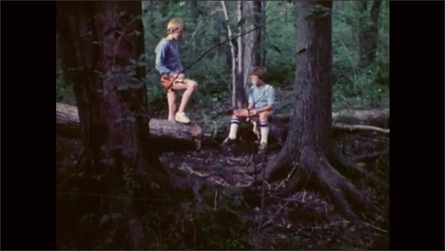 1980s: UNITED STATES: boy sits on fallen tree stump. Boys sit in forest and talk.