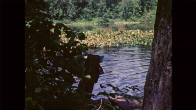 1980s: Green vegetation on lakeshore, water ripples, a boy rows a boat while another boy sits, they approach the shore, a boy paddles in a canoe in the background.
