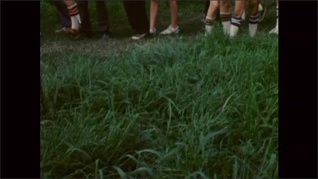 1980s: UNITED STATES: flowers in woods. Poison ivy in grass. Boys go for walk