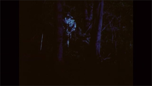 1980s: UNITED STATES: lights in forest at night. Boy walks in woods at night. Man follows boy in woods at night. Lights on boy's face.