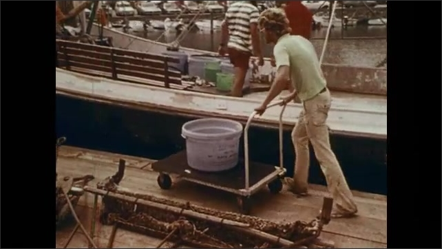 1970s: Liquid drops into test tube. Man lifts test tube, holds it up. Men unload bucket from boat onto cart, push it into storage building. Woman scoops squid up from tank, dumps squid onto tray.