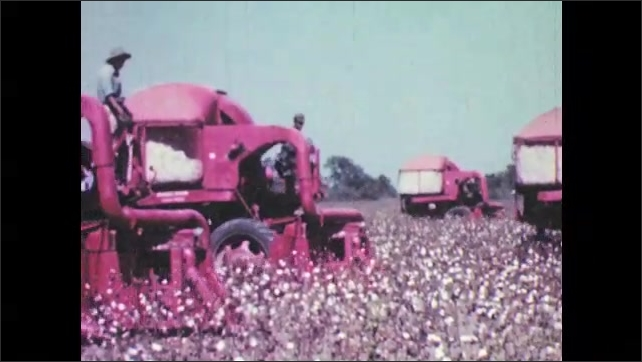 1940s: Machine plows through field, picking cotton. Multiple machines plow across fields picking cotton.