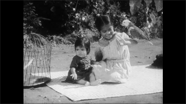 1930s: Man yokes oxen.  Woman rolls up bed cover and takes outside to air.  Young girls sit on blanket.  Parrot sits on girl's head.
