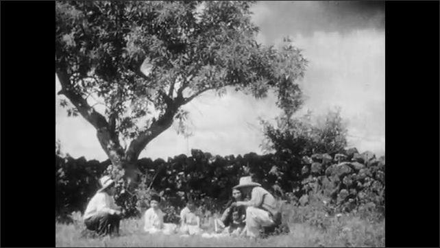 1930s: Man stabs stick into ground in front of ox.  Men join picnic.  Girl passes man food.  People tear tortillas and talk.