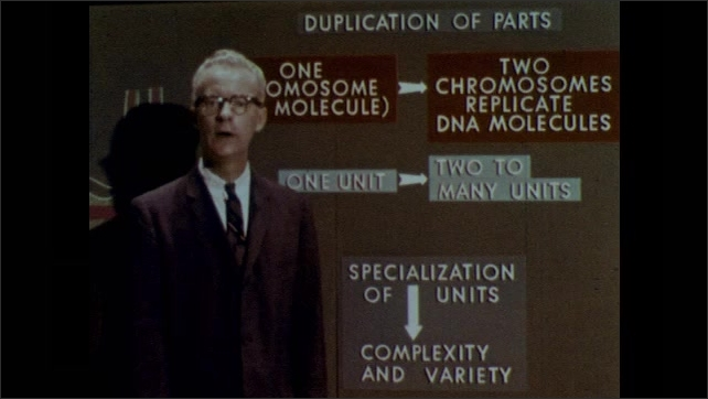 1960s: UNITED STATES: lecturer stands by chalk board diagram. Man speaks to camera. Duplicated units and specialised units. Duplication sequence of board.