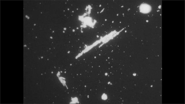 1950s: UNITED STATES: diatom chain under microscope.