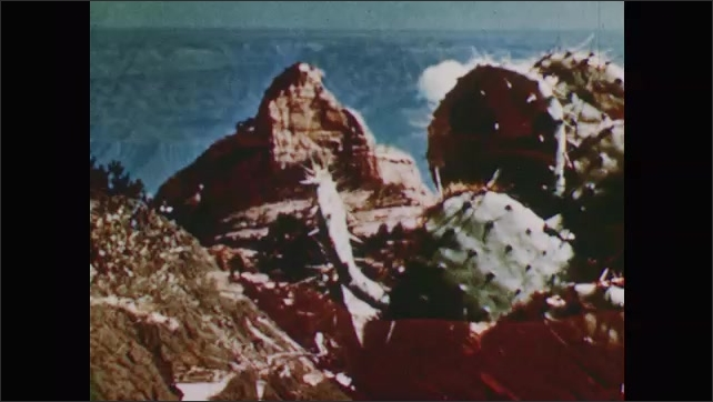 1950s: rocky desert hills and valley, rocky mountain with prickly pear cactus, rippling red-brown desert hills, odd rock formation against cloud in sky