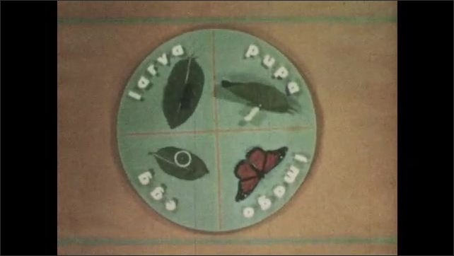 1960s: Spinning circle divided into 4 quadrants, each representing a stage of monarch butterfly life. Egg, larva, pupa, imago.