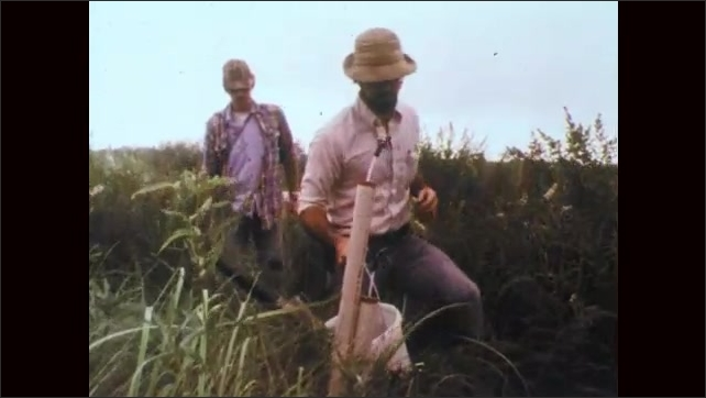 1970s: Men carry equipment through tall grass in marsh. Men approach vent pipes in wetlands. Man in hat speaks.