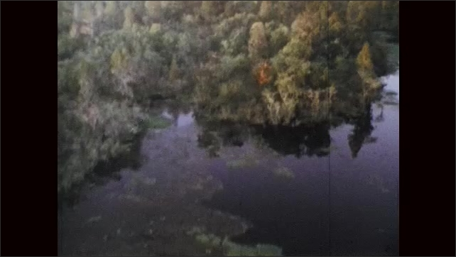1970s: Aerial view of swamp.
