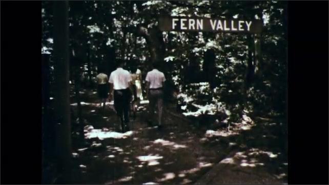 1960s: Children smell flowers. People walk down path marked Fern Valley. Ferns.