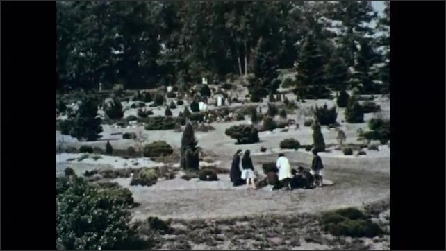 1960s: Man and woman look at tree, touch tree. People walk around arboretum, touch plants.