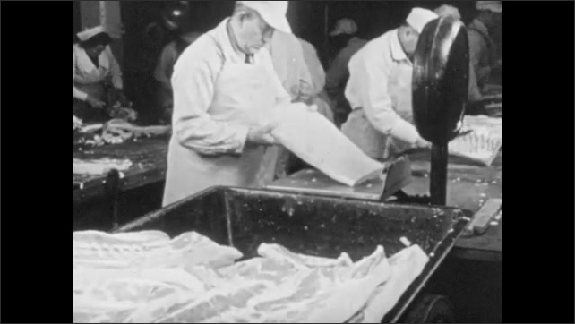 1950s: Meat processing plant.  Man weighs and inspects meat.