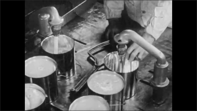 1950s: Factory.  Men inspect and move pieces of fat.  Lard pours into cans.