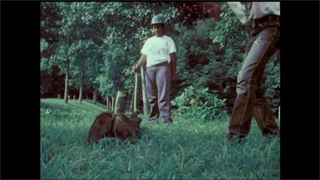 1970s: teenage boys in hard hats split logs with wedges and sledgehammers, smooth timber with blades and build wood fences in woods near lake and campground in Virginia park.