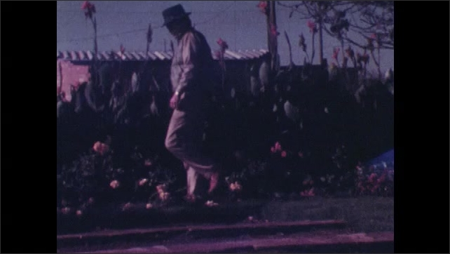 1970s: View of road sign. Close up of man. Man kneels in garden, looks at flowers. Man by swimming pool. Men standing next to truck.