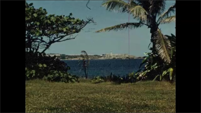 1940s: View of water from shore, where palm trees are.