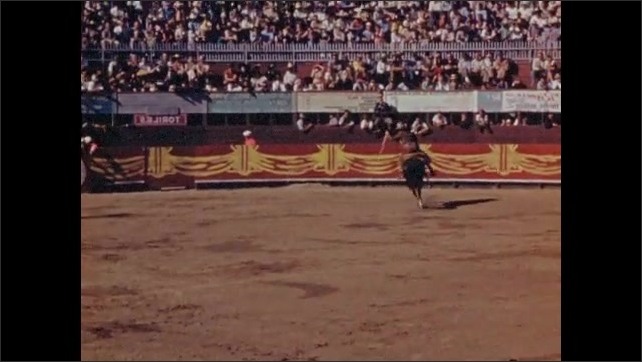1940s: Toreador on horse dances around bull in ring for spectators, trying to stab it with spear. Toreador tries to taunt bull with cape.