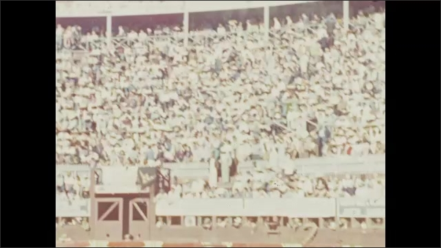 1940s: Crowd in stands at bullfighting arena. Men open gate, let bull into the ring.