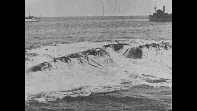 1930s: UNITED STATES: man sets up pumps on surface of water. Air pumped into pontoons. Air on surface of water. Sunken ship rises to surface of water.