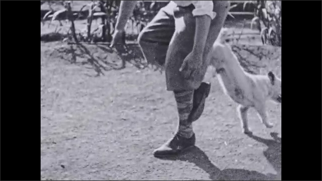 1930s: Text placard. Trainer holds up leg and points, Dog leaps over leg. Text placard. Dog leaps between man's legs. Text placard. Dog runs toward trainer and barks.