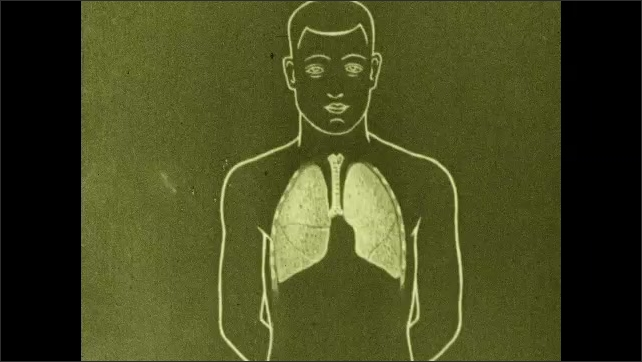 1930s: Men breathe into tube, cylinder attached to tube rises. Drawing of lungs, bronchi, and trachea inside man.