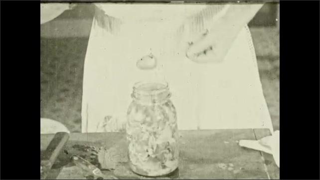 1930s: Woman puts jars in pot of water. Woman carves chicken. Hands put chicken in jar. Hands put salt in jar, attach lid.