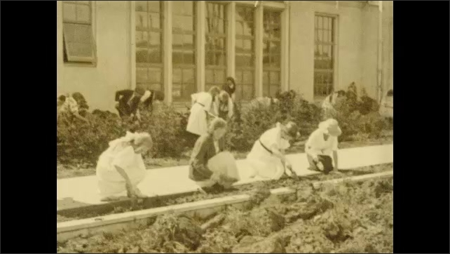 1920s: Two boys plant plants in garden outside of building. Children work on gardens all over landscape in front of building. Man in suit directs workers to plow field.