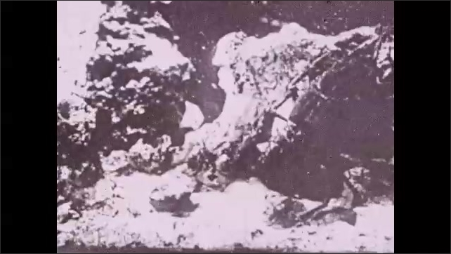 1930s: Stick points at tail of crayfish. Title card. Crayfish climbs up and around rocks under water.