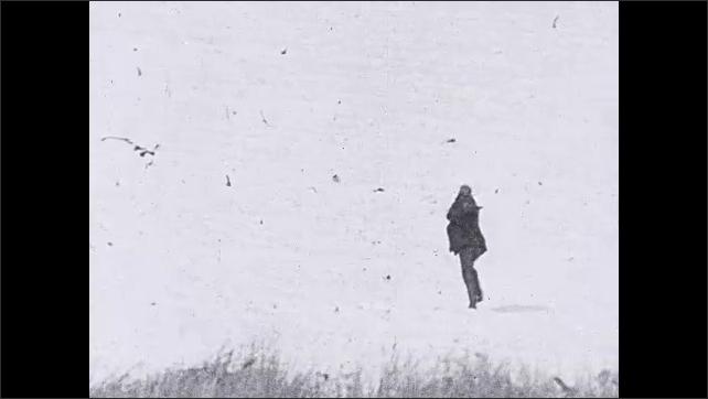 1930s: Pan of turkey flying, falling to ground. Man and woman run off screen. Long shot, man running in field. Man carries turkey in snow. Man and woman walking in snow. Man and woman inspect turkey.