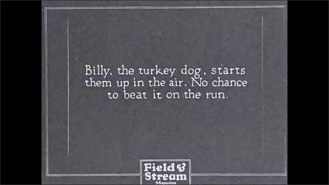 1930s: Intertitle. Men under tree. Turkey in snow. Turkey runs past, men stand and run. Turkey walking. Intertitle. Dog chasing turkey. Man shoots gun. Turkey falls, dog attacks turkey.