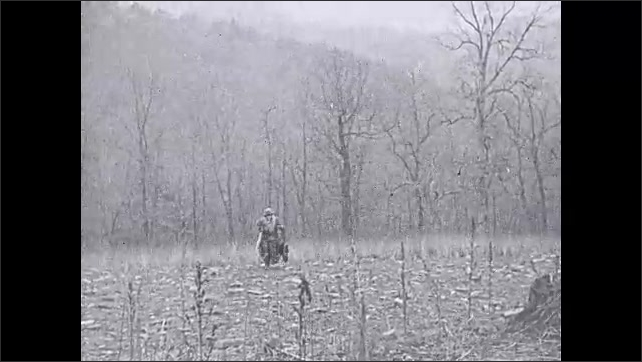 1930s: Woman picks up dead turkey, runs toward camera.