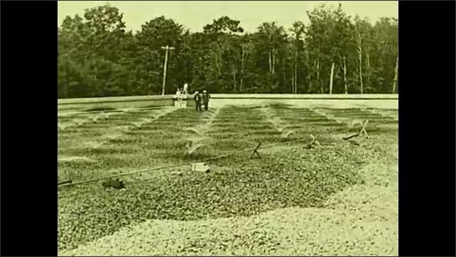 1930s: UNITED STATES: sewage filtered through rocks at plant. View across filtration bed. Men look at rocks.