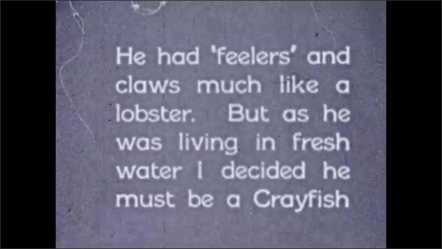 1930s: Mouth of lobster. Lobster. Title card. Lobster. Lobster's claws.
