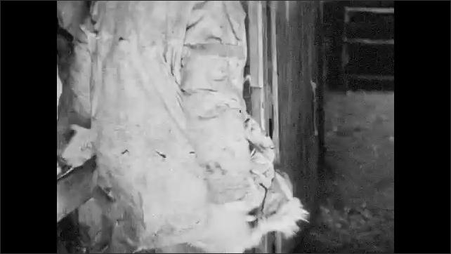 1930s: UNITED STATES: man puts on bird skin coat. Man enters passageway