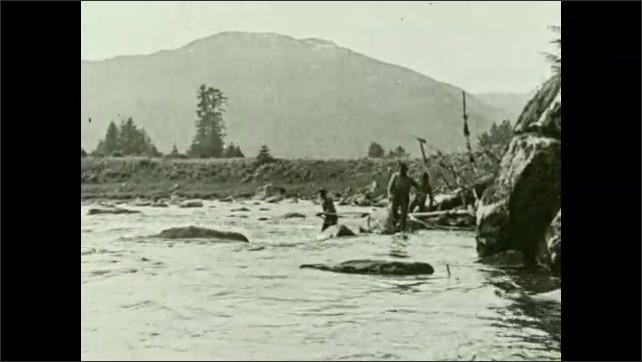 1930s: Men walk along riverbank, carry poles. Men wade in river.